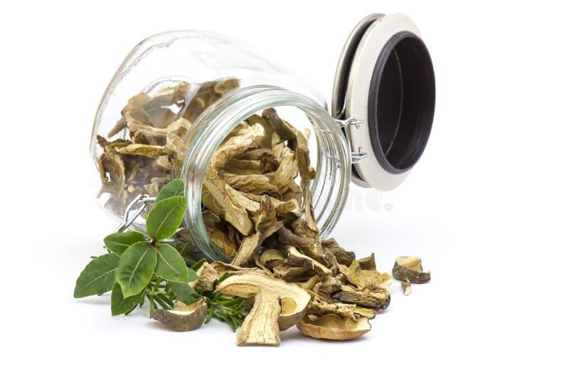 Высушенные грибы - подосиновик стоковая фотография rf