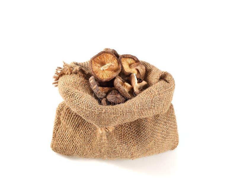 Высушенные грибы шиитаке в мешке изолированном на белой предпосылке стоковое фото