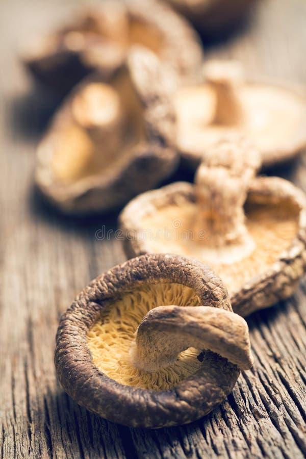 Высушенные грибы шиитаке на старом деревянном столе стоковые изображения