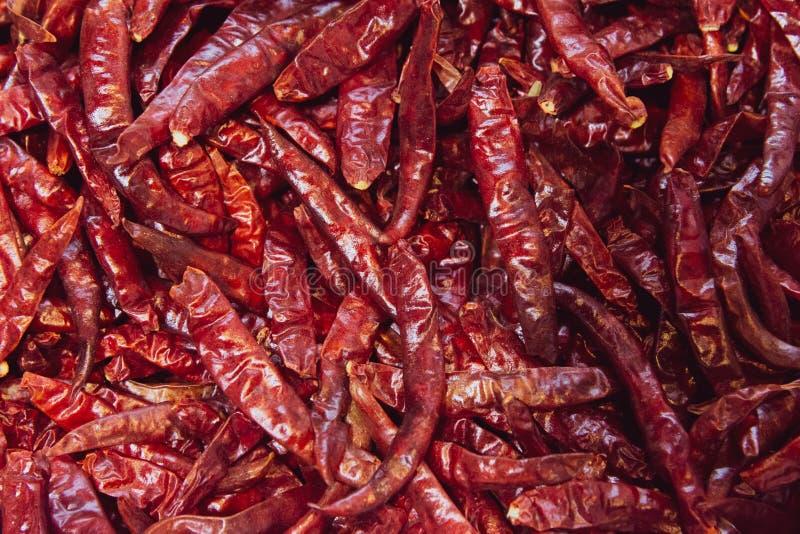 Высушенные накаленные докрасна перцы chili, пищевой ингредиент стоковые фото