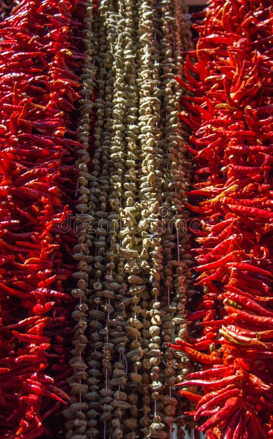 Высушенные перцы и aubergines и красочные специи стоковые изображения