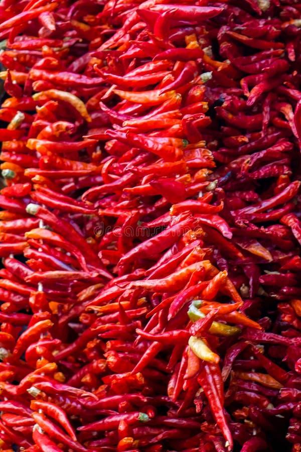 Высушенные перцы и aubergines и красочные специи стоковые изображения rf