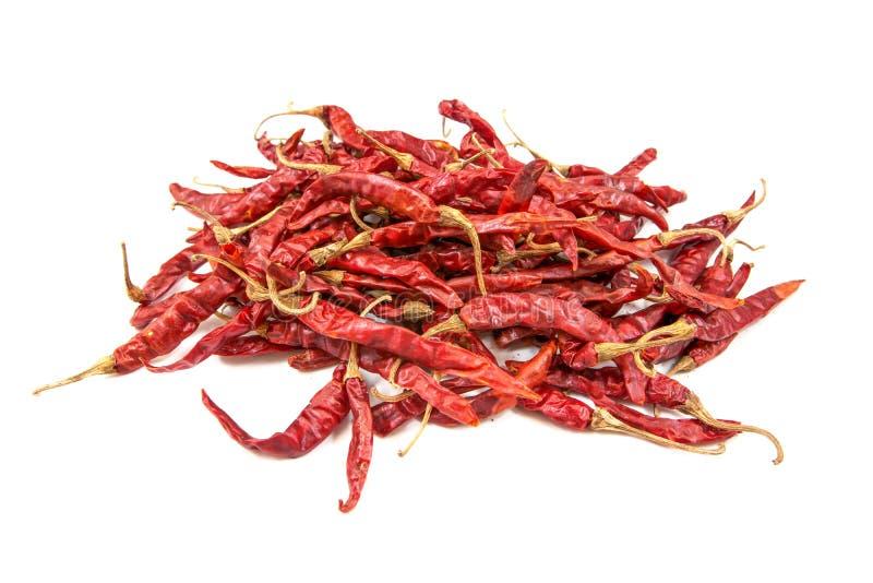 Высушенные перцы chili на белой предпосылке Высушенный изолированный chili Высушенный изолированный chili стоковое изображение