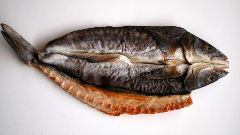 высушенные посоленные рыбы стоковое изображение rf