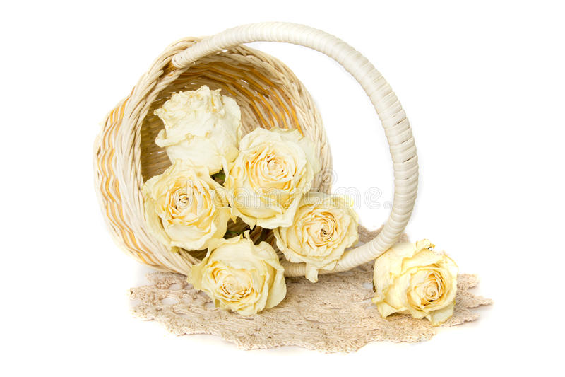 Высушенные розы в корзине с doily стоковое фото