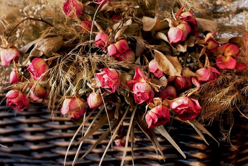 Высушенные розы в плетеной корзине стоковые фото