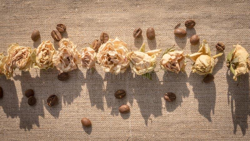Высушенные розы и кофе стоковое изображение