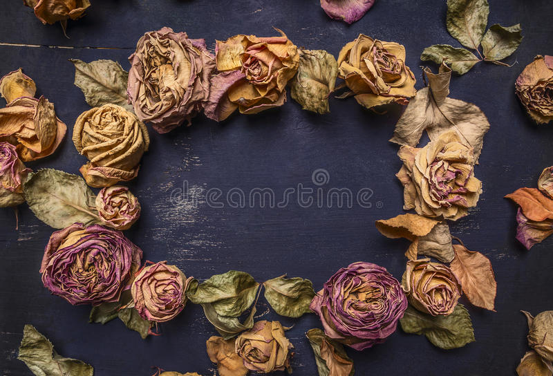 Высушенные розы с лепестками, выровнянной рамкой с космосом для конца взгляд сверху предпосылки текста деревянного деревенского в стоковое фото rf
