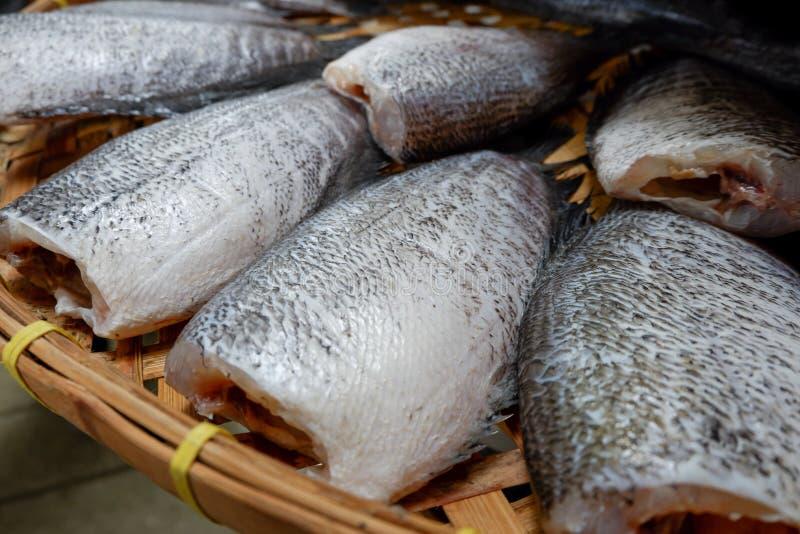 Высушенные рыбы осфронемовых Snakeskin стоковое изображение