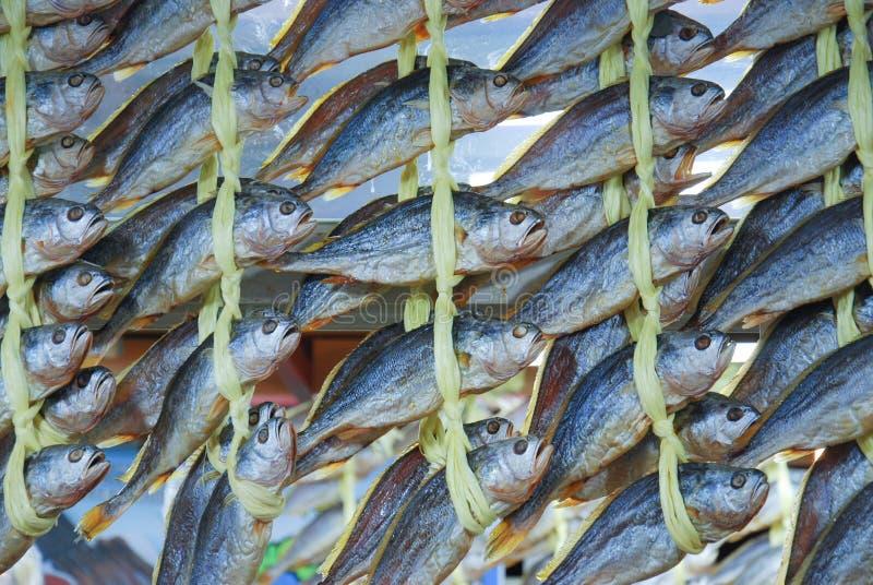 Высушенные рыбы связали для продажи в рынке Сеула стоковая фотография