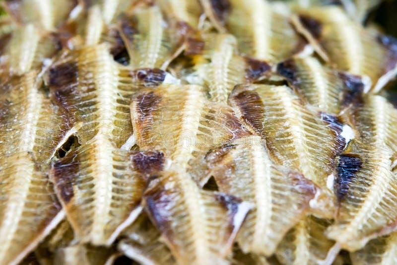 Высушенные рыбы стоковое фото rf