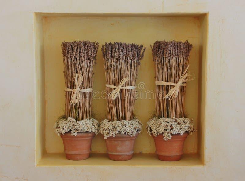 Высушенные цветки лаванды в 3 вазах стоковое изображение rf