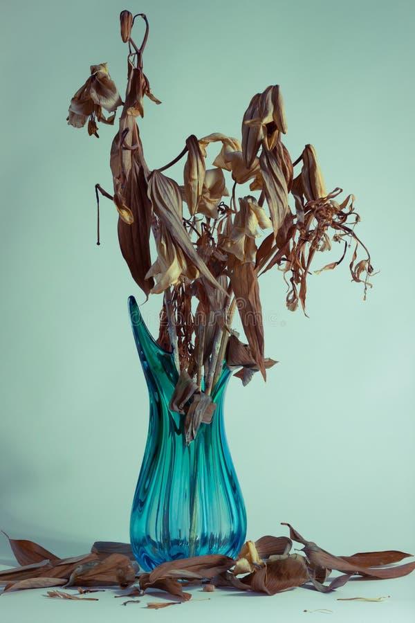 Высушенные цветки в вазе стоковое изображение