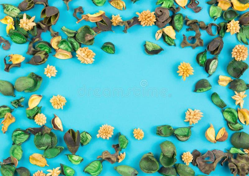 Высушенные цветки и состав листьев как рамка на голубой предпосылке Взгляд сверху, плоское положение стоковая фотография rf