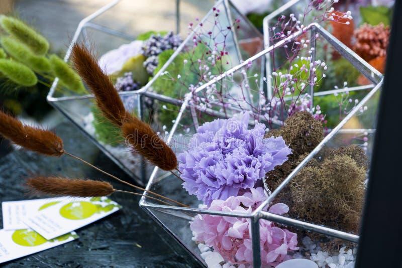 высушенные цветки стоковые фотографии rf