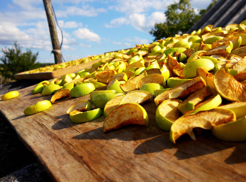 высушенные яблоки стоковое изображение rf
