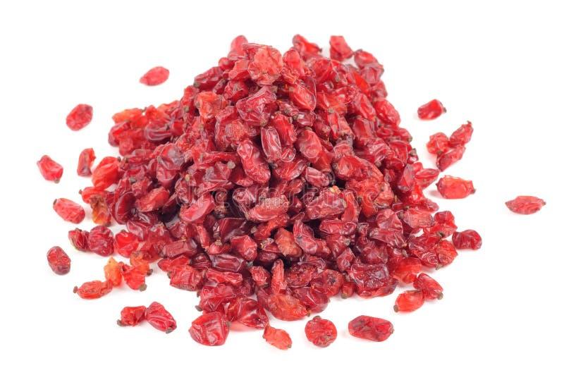 высушенные ягоды барбариса стоковое изображение