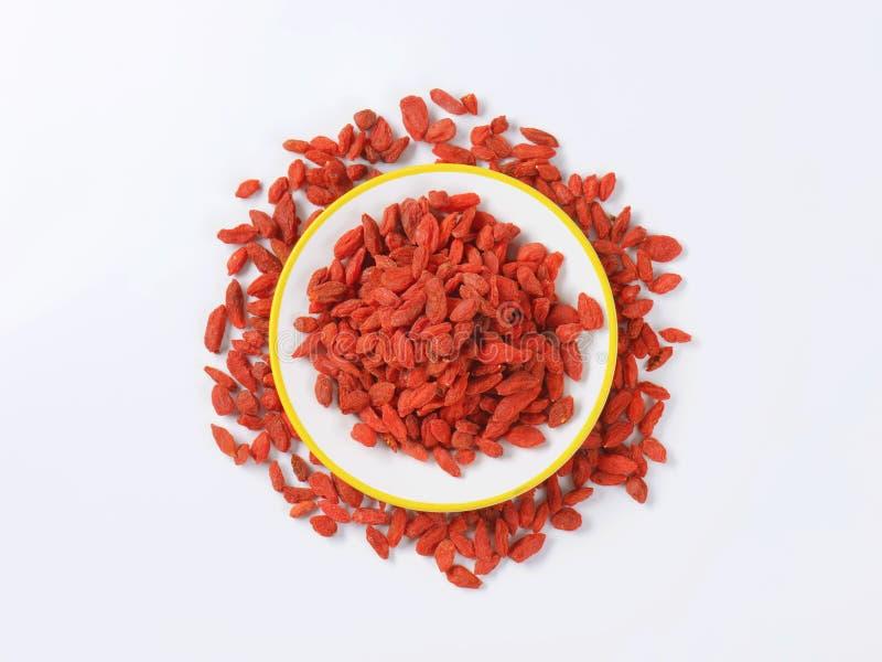 Высушенные ягоды волка стоковое фото rf