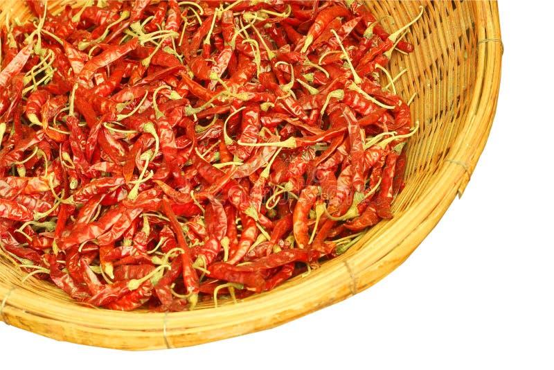 Высушенные chilies в изоляции корзины на белой предпосылке стоковое изображение