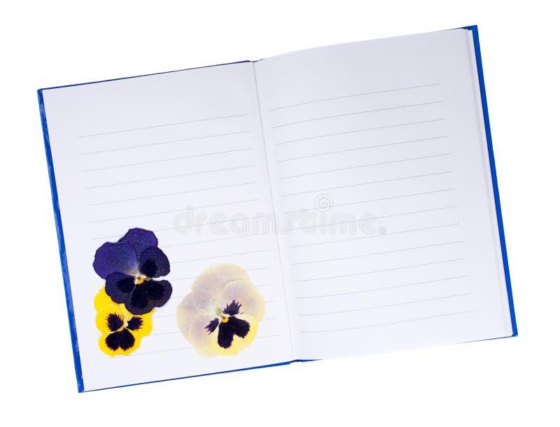 Download Высушенный отжатый Pansy цветет в тетради - памятях, летах в прошлом Стоковое Фото - изображение насчитывающей pansies, цветки: 41652498