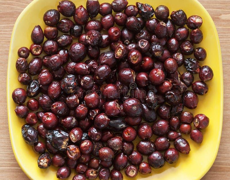 Высушенный плод шиповника стоковое изображение