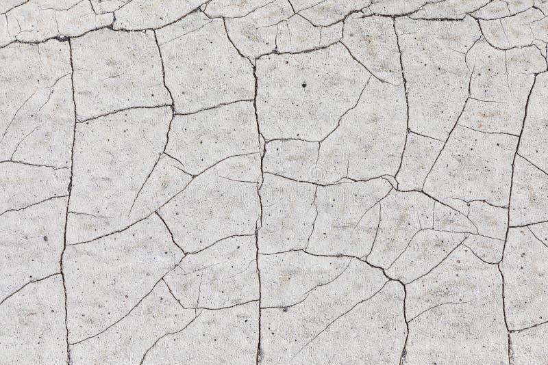 Высушенный треснутый суглинок стоковое фото