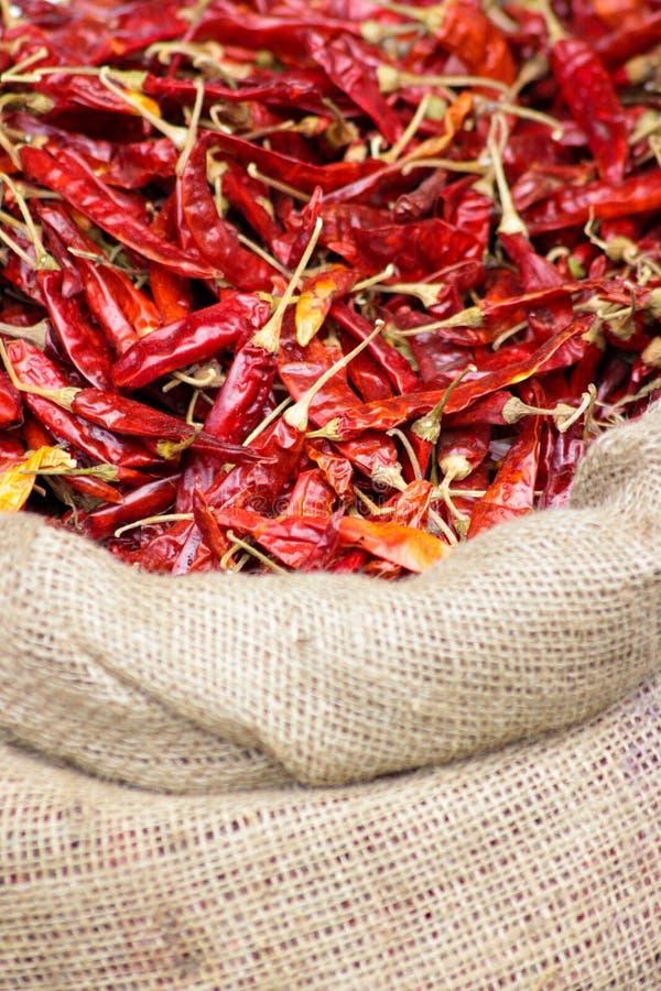 высушенный chili перчит красный цвет стоковое изображение