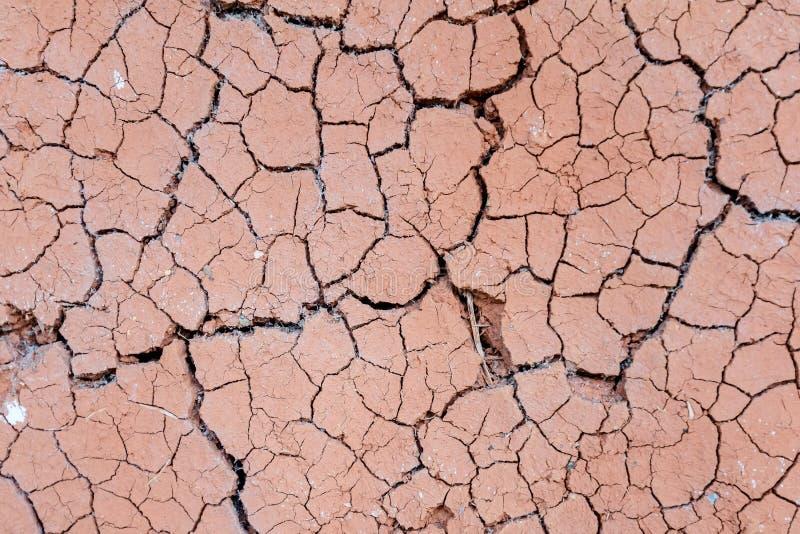 высушите грязь стоковое изображение rf