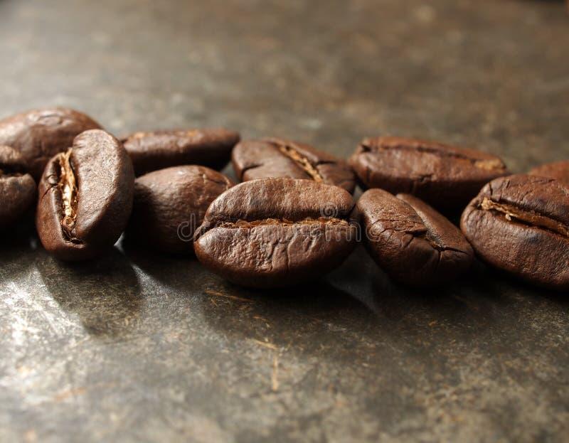 Высушите зажаренные в духовке кофейные зерна стоковое изображение