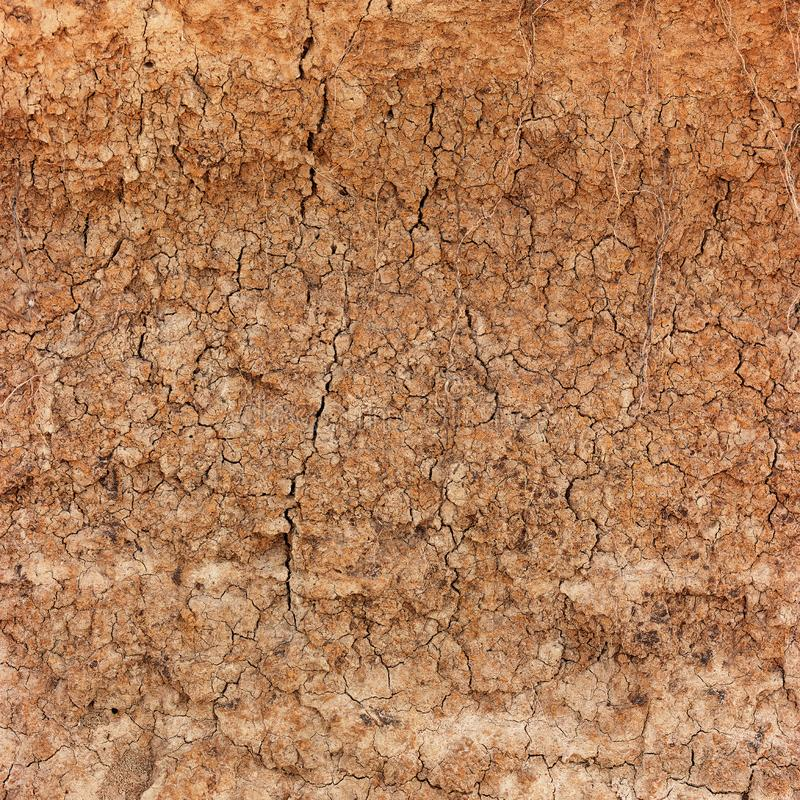 Высушите, трескающ почву глины в весьма крупном плане стоковые изображения