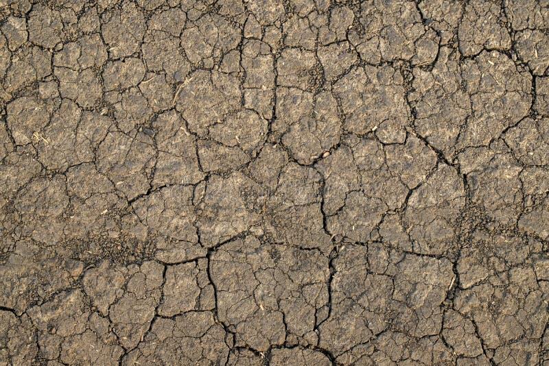 Высушите треснутые текстуру и предпосылку почвы Предпосылка почвы Grunge стоковые фото