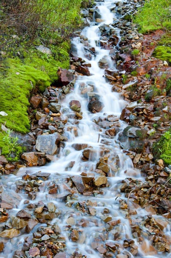 вытекающая вода дождя стоковое изображение