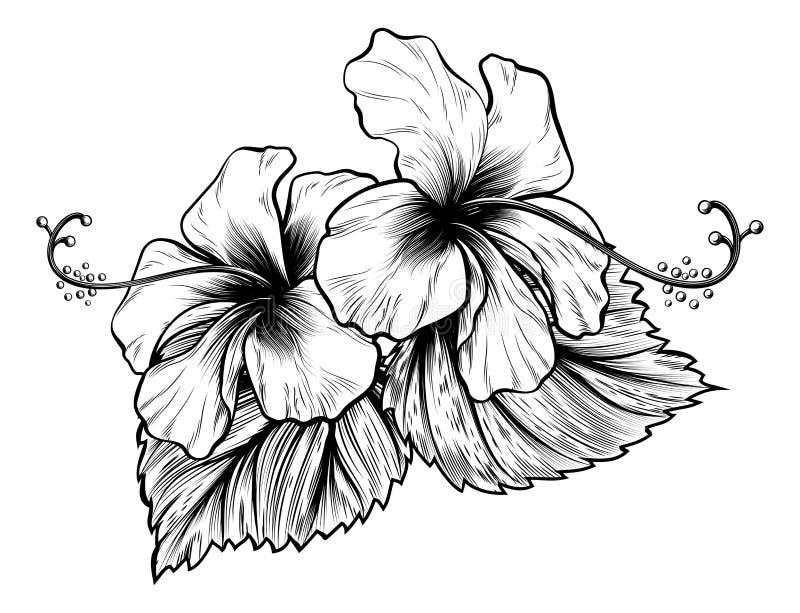 Вытравливание стиля цветков гибискуса винтажным выгравированное Woodcut иллюстрация вектора