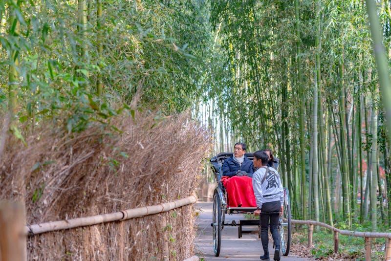 Вытягиванные туристы рикши ехать через бамбуковый путь леса на Arashiyama, Киото стоковое фото rf