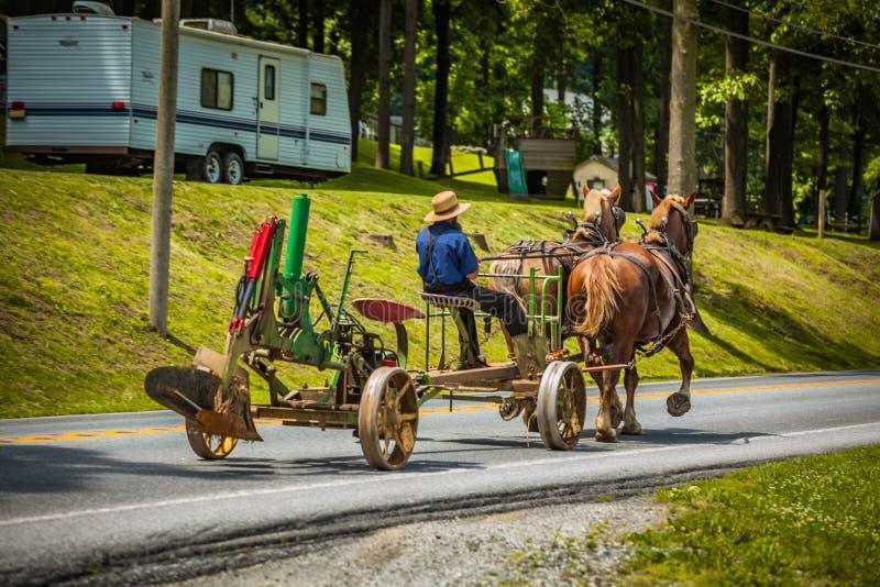 Вытягивать плужок на дороге с лошадями стоковые изображения