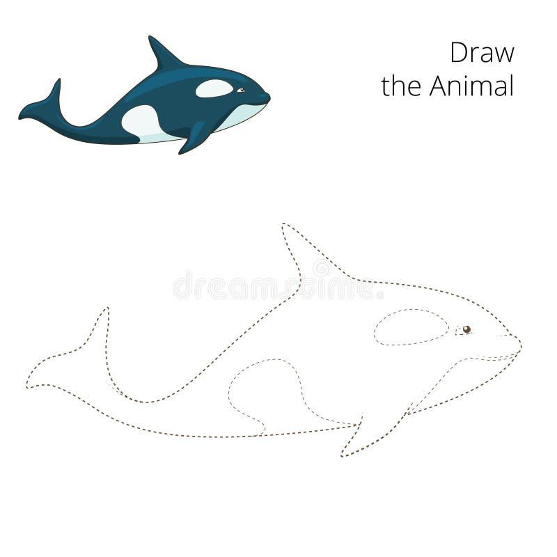 Выучите нарисовать животную иллюстрацию вектора кита иллюстрация вектора