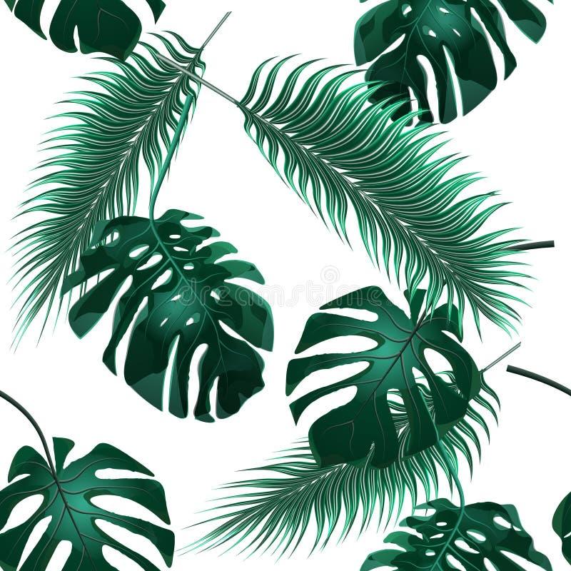 выходит ладонь тропической Чащи джунглей обои предпосылки флористические безшовные иллюстрация иллюстрация вектора