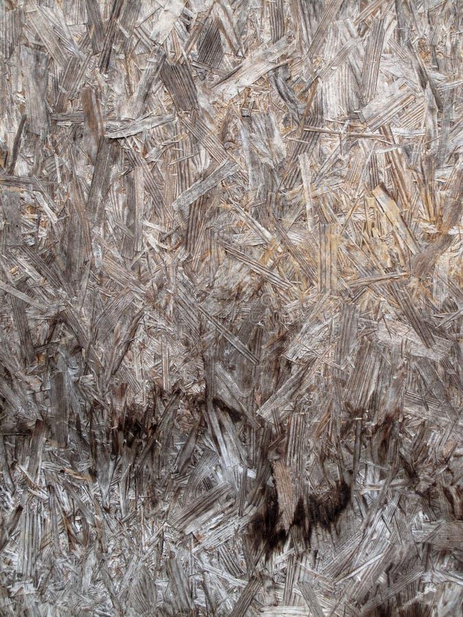 Выдержанная обжатая древесина стоковая фотография