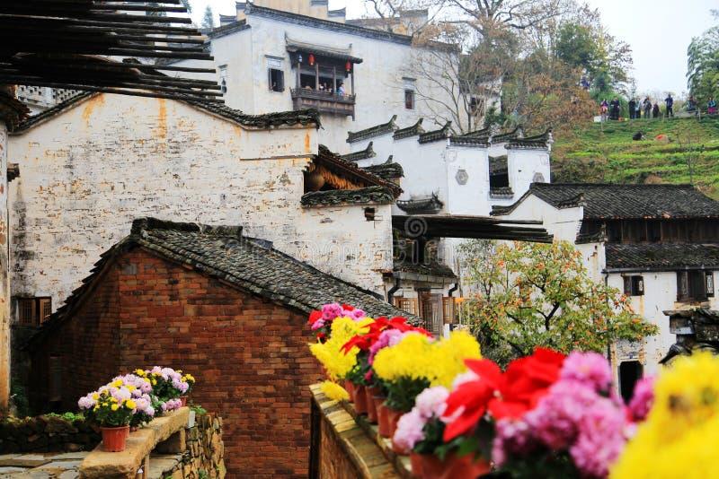 Выдержка урожаев в сезоне осени на деревне Huanglin стоковые изображения rf