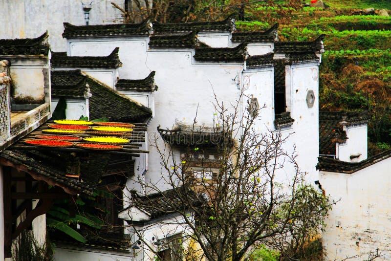 Выдержка урожаев в сезоне осени на деревне Huanglin стоковая фотография