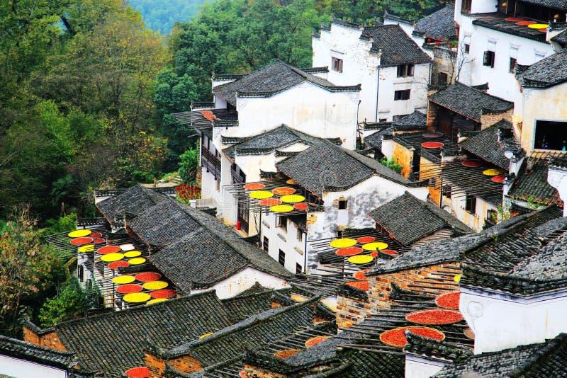 Выдержка урожаев в сезоне осени на деревне Huanglin стоковые фотографии rf
