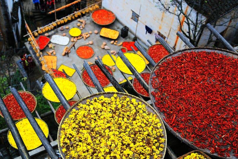 Выдержка урожаев в сезоне осени на деревне Huanglin стоковое фото rf