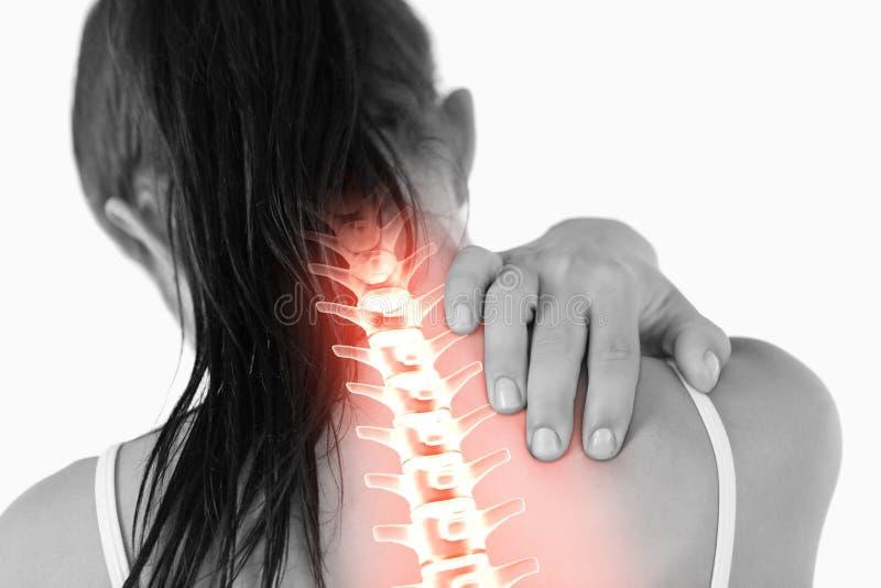 Выделенный позвоночник женщины с болью шеи стоковые фото