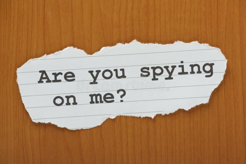 Вы шпионите на мне? стоковое изображение rf