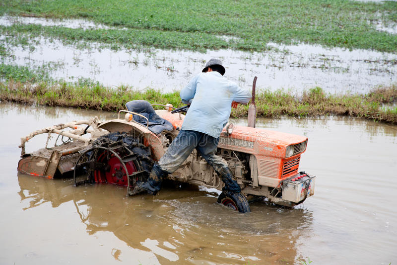 вьетнамец хуторянина стоковое фото