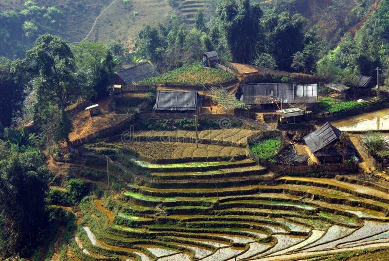 Вьетнам стоковые изображения rf
