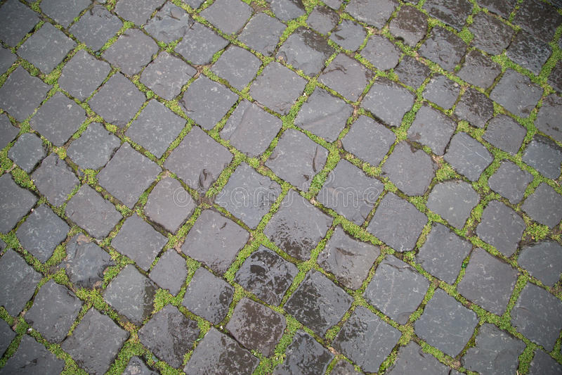 Влажная каменная трава дороги стоковое изображение
