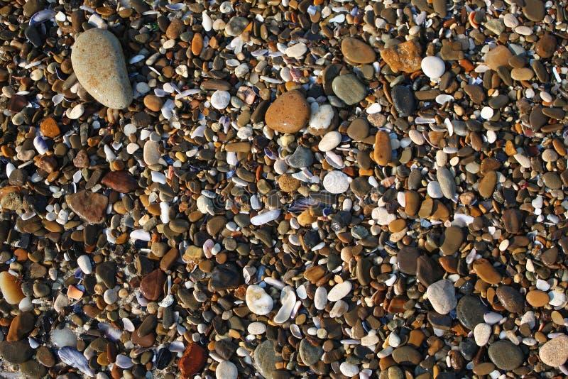 Влажные камни моря стоковая фотография