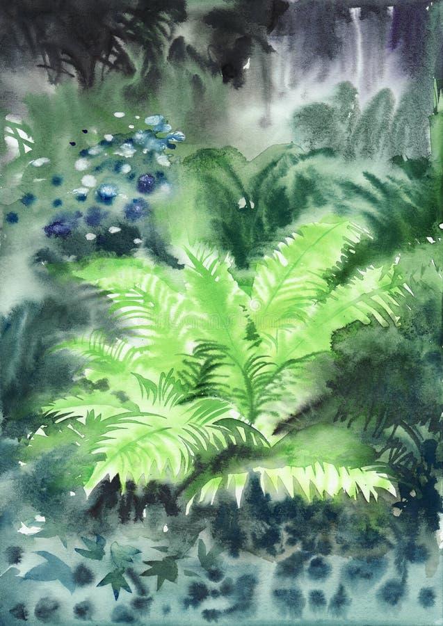 Влажный папоротник в туманном лесе бесплатная иллюстрация