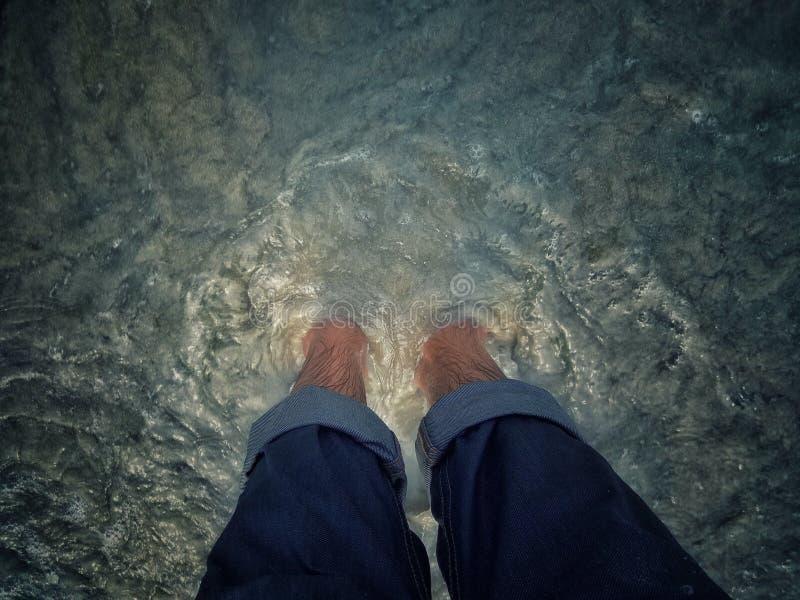 В воду стоковая фотография